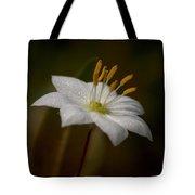 Arctic Starflower Tote Bag