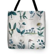 Lithography Of Common Flowers  Tote Bag