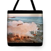 1-1-18--5790 Don't Drop The Crystal Ball Tote Bag