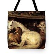 10234 Edwin Henry Landseer Tote Bag