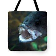 20-01-17 Tote Bag
