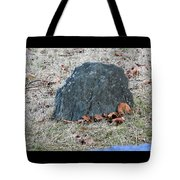 1-20-18--7452 Don't Drop The Crystal Ball Tote Bag
