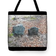 1-20-18--7466 Don't Drop The Crystal Ball Tote Bag