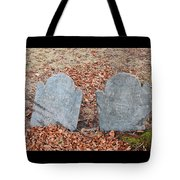 1-20-18--7467 Don't Drop The Crystal Ball Tote Bag