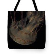 23-01-17 Tote Bag