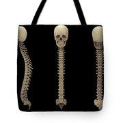 3d Rendering Of Human Vertebral Column Tote Bag