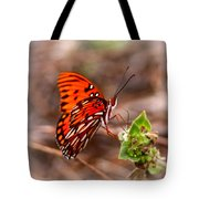 4534 - Butterfly Tote Bag