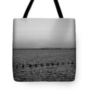 A Beautiful Heist  Tote Bag