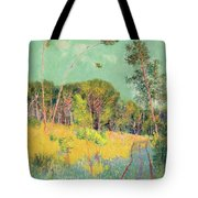 A Clearing In The Forest Tote Bag