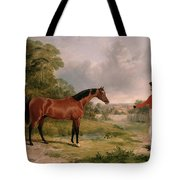 A Horse And A Soldier Tote Bag