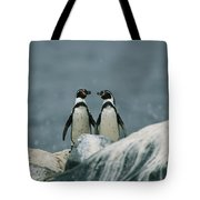 A Pair Of Humboldt, Or Peruvian Tote Bag