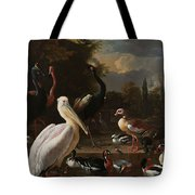 A Pelican And Other Birds Near A Pool, Known As The Floating Feather, Melchior D Hondecoeter, Tote Bag