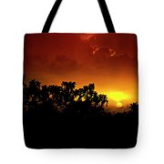 A Red Hot Desert Sunset  Tote Bag