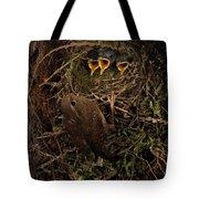 A Visit To The Nest Tote Bag
