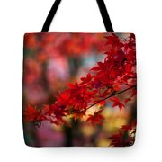 Acer Kaleidoscope Tote Bag by Mike Reid