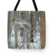 Acrobat Of The Forest Tote Bag