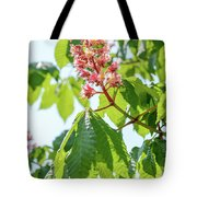 Aesculus X Carnea, Or Red Horse-chestnut Flower Tote Bag