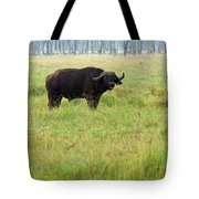 African Buffalo Tote Bag