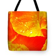 After The Rain ... Tote Bag