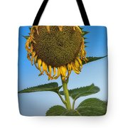 Aged Beauty Tote Bag