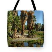 Agua Caliente Park Tote Bag