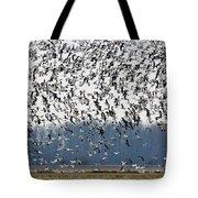 Air Traffic Tote Bag