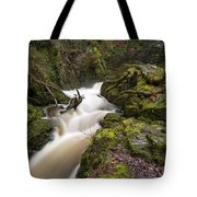 Aira Force Lower Stone Bridge Tote Bag