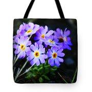 Alaskan Wild Flowers Tote Bag