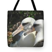 Albatross Lovers Tote Bag