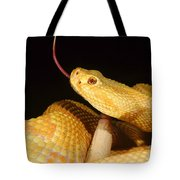 Albino Brazilian Rattlesnake Tote Bag