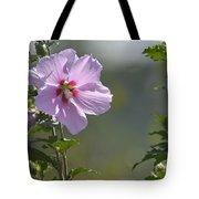 Althea Rose Of Sharon Hibiscus Bloom Tote Bag