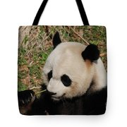 Amazing Panda Bear Holding On To Shoots Of Bamboo Tote Bag