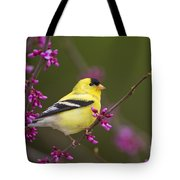 American Goldfinch In Redbud Tote Bag