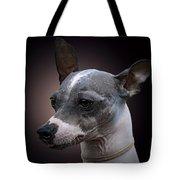 American Hairlessterrier  Tote Bag