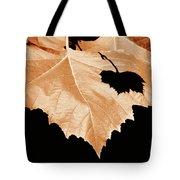 American Sycamore Leaf And Leaf Shadow Tote Bag