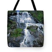 amicalola falls Ga Tote Bag