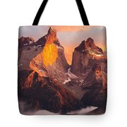 Andes Mountains Tote Bag