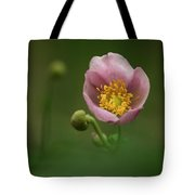 Anemone Japonica  Tote Bag