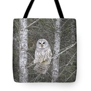 Angel Owl Tote Bag