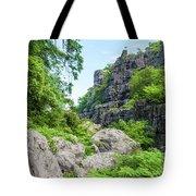 Ankarana Tote Bag
