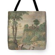Apollo Pursuing Daphne Tote Bag
