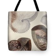 Aquatic Animals - Sea - Shells - Composition - Alien - Wall Art  - Interior Decoration  Tote Bag