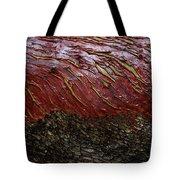 Arbutus Tree Bark Tote Bag