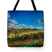 Arizona Sunrise 8 Tote Bag