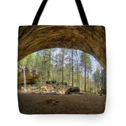 Ash Cave Waterfall Tote Bag