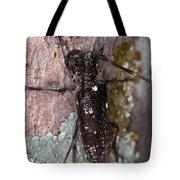 Asian Long-horned Beetle Tote Bag