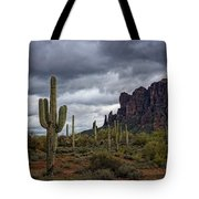 At The Base Of The Mountain Tote Bag