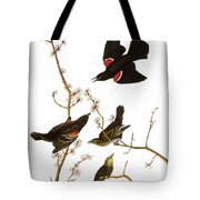 Audubon: Blackbird, (1827) Tote Bag