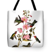 Audubon: Hummingbird Tote Bag