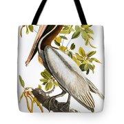 Audubon: Pelican Tote Bag